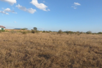 EASTERN BYPASS PLOTS FOR SALE